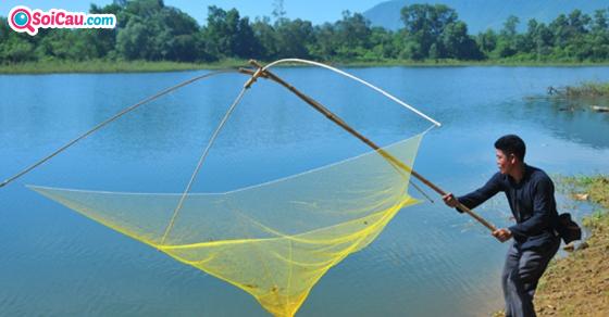 Giải mã giấc mơ thấy bắt cá