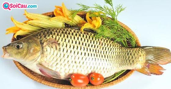 Mơ thấy cá chép là điềm gì?
