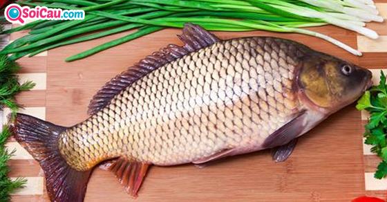 Nằm mơ thấy cá chép đánh con gì?